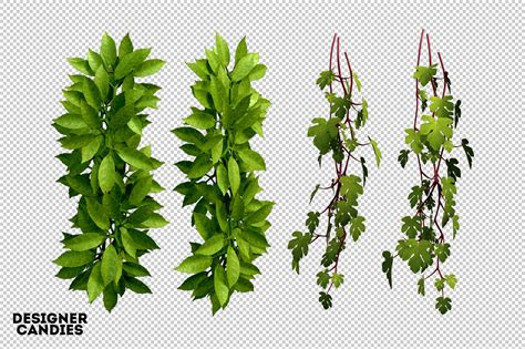 hanging file frame the foliage pack designercandies