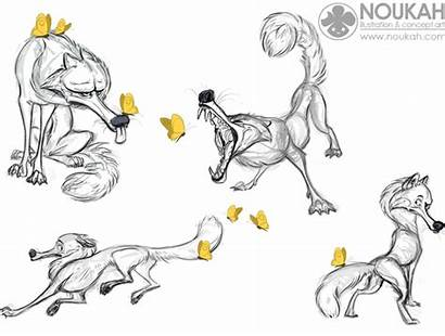 Sketches Wolf Poses Noukah Wolves Drawings Pooping