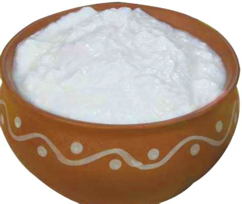dahi  curd    superfood  protect