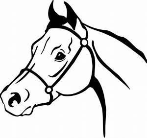 Arabian Horse Head Clipart | Clipart Panda - Free Clipart ...