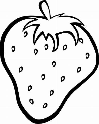 Coloring Fruit Pages Strawberry Drawing Clipart Outline