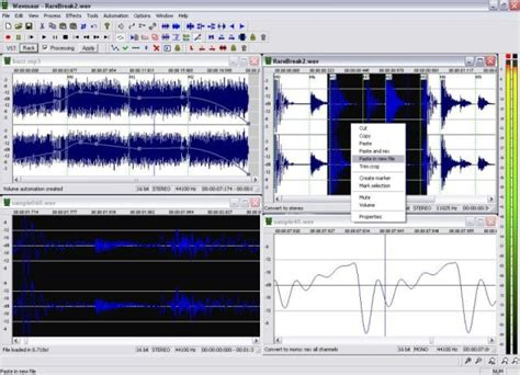 audio editing software    paid