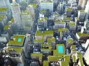the green building wedding cost new york green roof installer costs eco