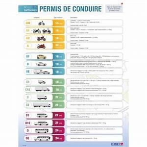 Véhicule Catégorie B : affiches cat gories permis ~ Medecine-chirurgie-esthetiques.com Avis de Voitures
