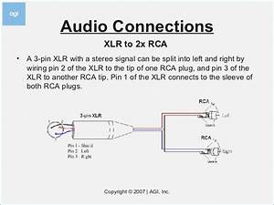 1 4 Stereo To Mono Xlr Male Wiring Diagram  U2013 Fasett Info