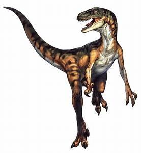 Velociraptor - Dino Crisis Wiki  Velociraptor