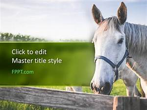 Powerpoint Templates For Training Free Horse Powerpoint Template Free Powerpoint Templates