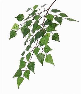 Branche De Bouleau : fleurs artificielles fleurs en soie top art int ~ Melissatoandfro.com Idées de Décoration
