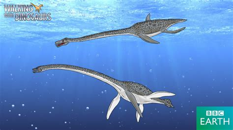 Elasmosaurus By Trefrex On Deviantart