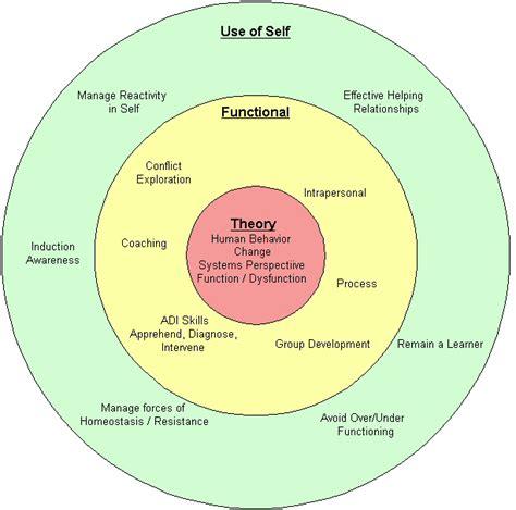 functional    primary goals