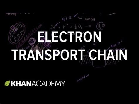 khan academy preschool khan academy goes to preschool with 313 | electron transport chain youtube thumbnail