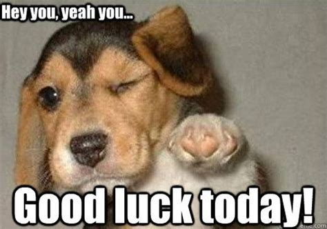 Funny Good Luck Memes - good luck today hey you yeah you pinteres