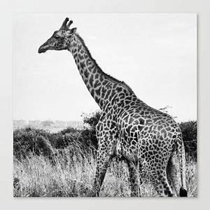 Giraffe Tumblr Black And White