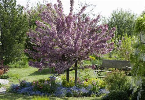 Baum Pflanzen In 6 Schritten  Obi Ratgeber