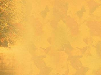 Fall Backgrounds Powerpoint by Fall Autumn 07 Powerpoint Templates