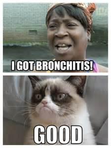 Grumpy Cat Meme Browns