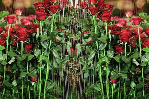 workshops floral design courses las vegas school