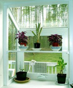 Small Plants For Kitchen Window by 1000 Images About Window Seat And Plants On