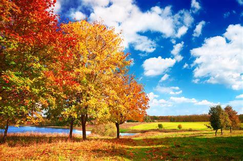 Jaunnedēļ Latvijā gaidāma zelta rudens kulminācija   LA.LV