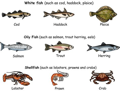 meat poultry  seafood vocabulary eslbuzz learning