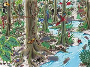 Ecosystems backdrop, desert, rainforest playful learning ...