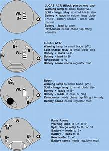 Lexus Alternator Wiring Diagram Basic