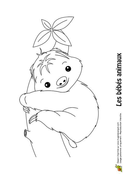 jeu gratuit de cuisine coloriage bébé paresseux hugolescargot com
