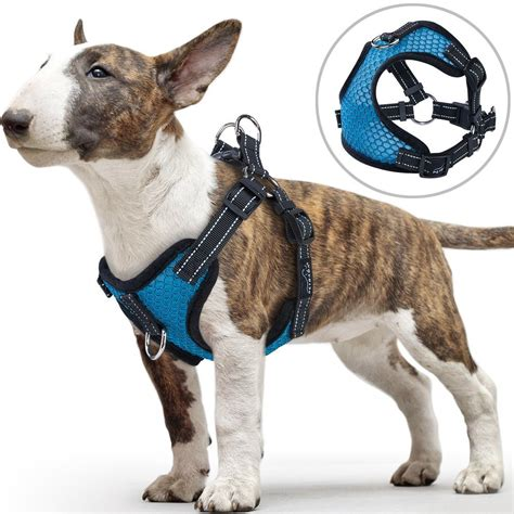 dogs  harness      fit