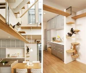 Katze Im Haus Halten : das wohl katzenfreundlichste haus der welt ~ Lizthompson.info Haus und Dekorationen