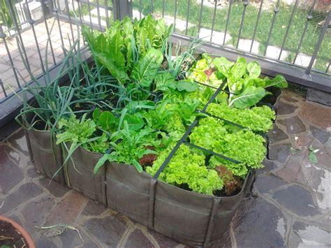 come fare l orto sul terrazzo orto sul terrazzo 187 come si fa