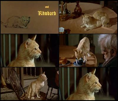 "Cats In Movies Orangey Aka Rhubarb In ""comedy Of Terrors"