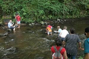 camping auvergne animations village vacances du lac de With camping auvergne avec piscine couverte 8 camping auvergne snackbar village vacances du lac de