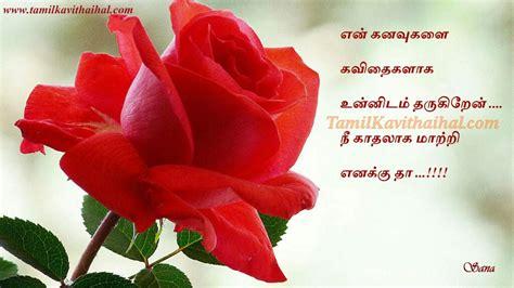 red rose flowers kadhal romance feel tamil kavithai kanavu