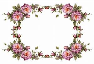 Flower Frame Png - ClipArt Best