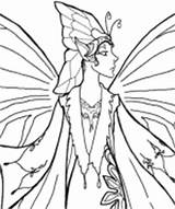 Bard Coloring Pheemcfaddell sketch template