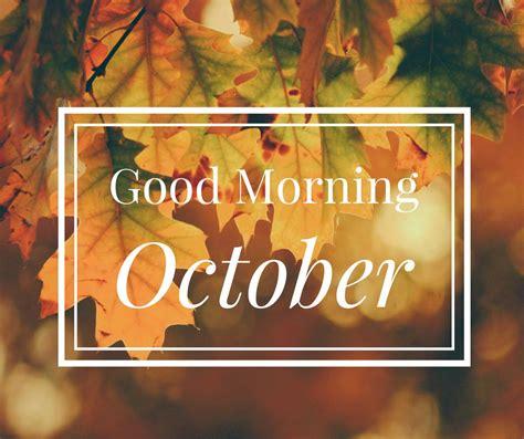 good morning october exploring autumn   shades