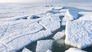 How a Wayward Arctic Current Could Cool the Climate in ...  Arctic