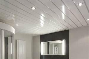 Fissure Au Plafond : fissure plafond platre maison neuve devis renovation salle ~ Premium-room.com Idées de Décoration