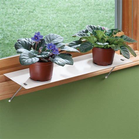 Window Ledge For Plants by Indoor Window Shelf Plant Plants Window