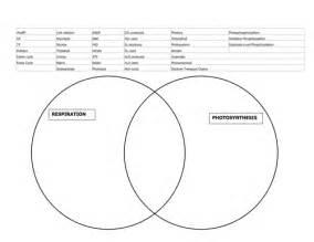 Photosynthesis And Respiration Venn Diagram