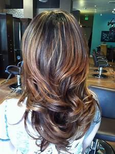 Images Of Partial Caramel Highlights For Dark Hair Summer