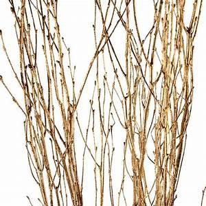 Decorative Branches Goldleaf Birch Branches
