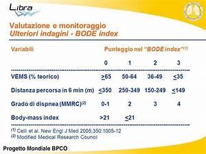 Bode Index  U2013 Le Malattie Dell U0026 39 Apparato Respiratorio