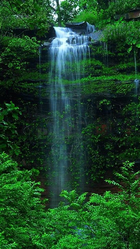 Wallpaper Iphone 7 Water Fall by Nature Forest Waterfall Iphone 6 Wallpaper Mountains