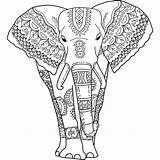 Coloring Elephant Pages Adults India sketch template