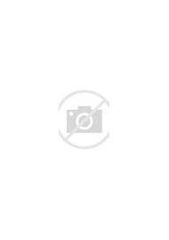Cherry Blossom Tree Anime Night