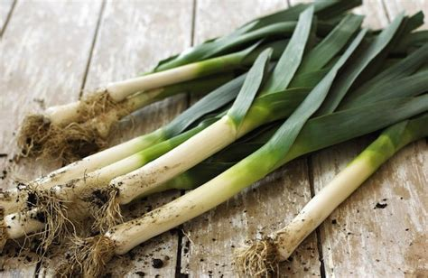cuisiner le poireau quels sont les fruits et légumes d 39 automne et où les