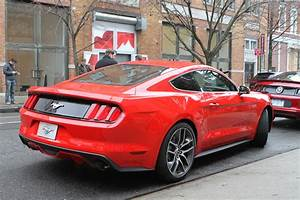 2015 Ford Mustang Coupe Rear.JPG - Photo 62764906 - 2015 Mustang Meets NYC