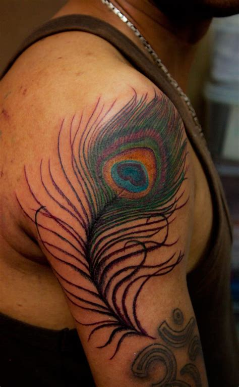 tattoos designs pictures  ideas peacock feather