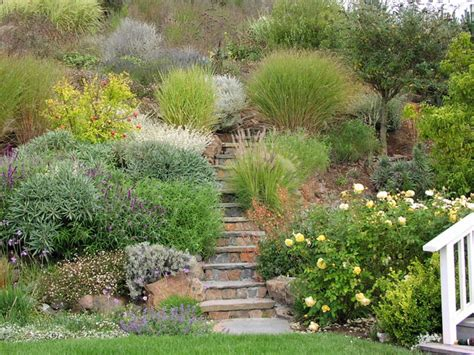 steep hill landscaping garden paths and landscape steps traditional landscape san francisco by derviss design
